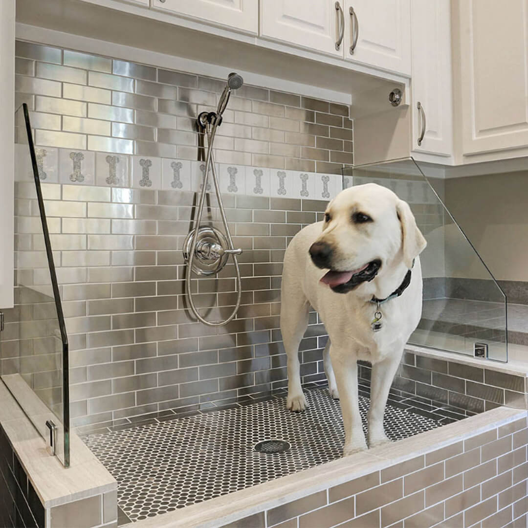 why-pet-owners-should-build-their-own-dog-shower.jpg