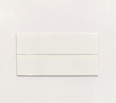 White Glossy (4500)